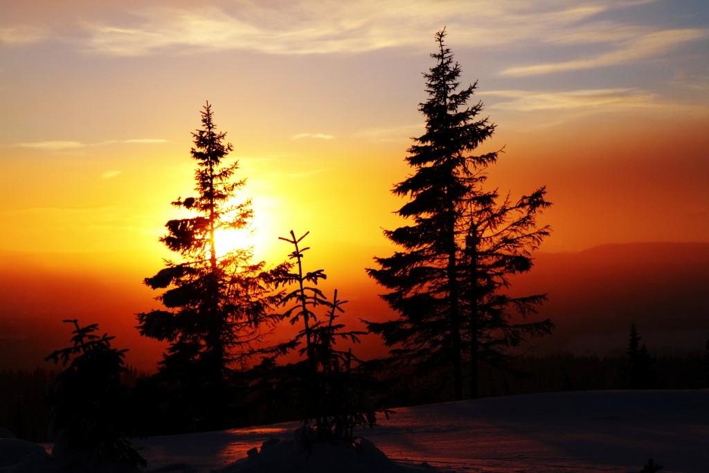 Solnedgang på leiehytte